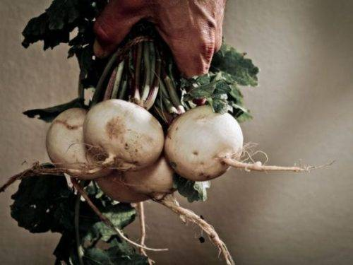 5 Root Vegetables You Need to Try